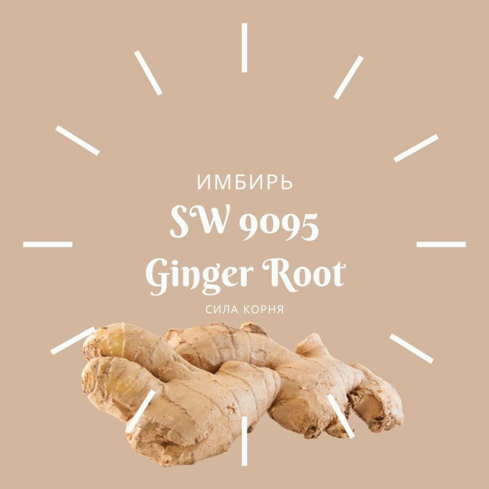 SW 9095 Ginger Root