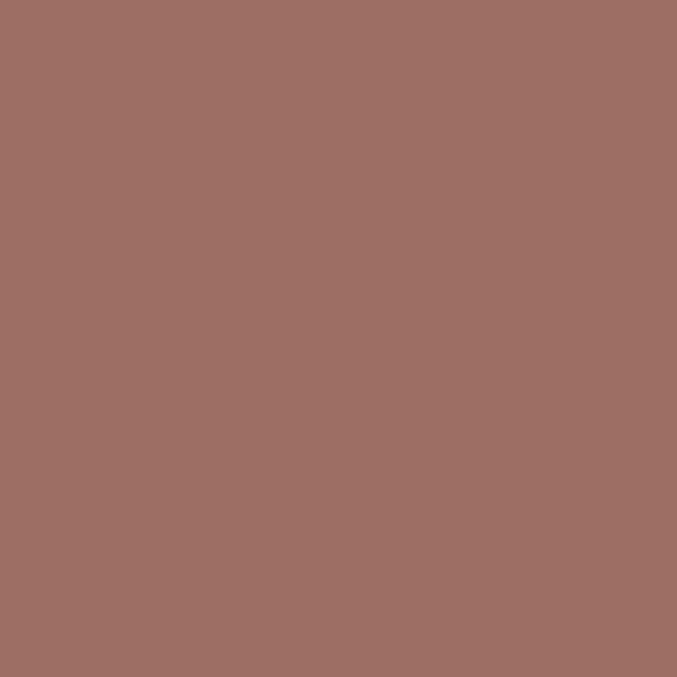 SW 6053 Reddened Earth