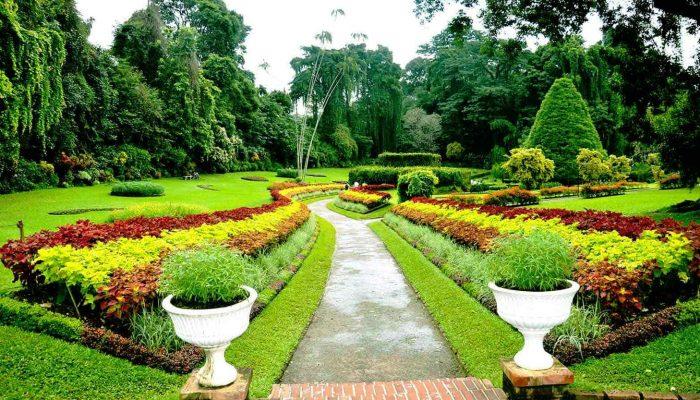 5-Sri-Lanka-Peradeniya-Botanical_Gardens_Kandy-Sri-Lanka