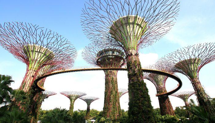 Darwish-Holidays-Singapore-2