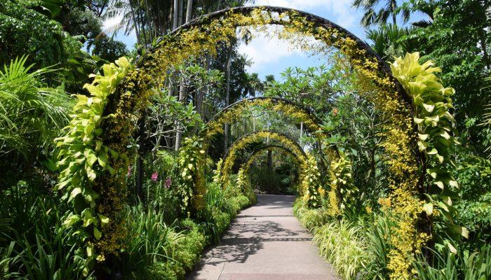 Darwish-Holidays-Singapore-9