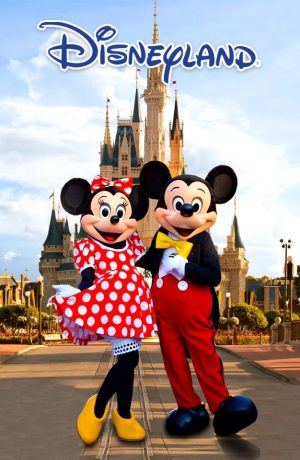 Disneyland-Side-banner2