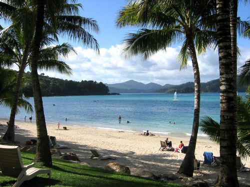 Hamilton Island Accommodation  Things to Do  Have fun