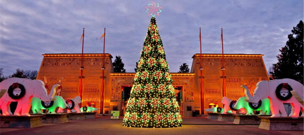 Commercial Christmas Trees For Downtowns, Light Shows And