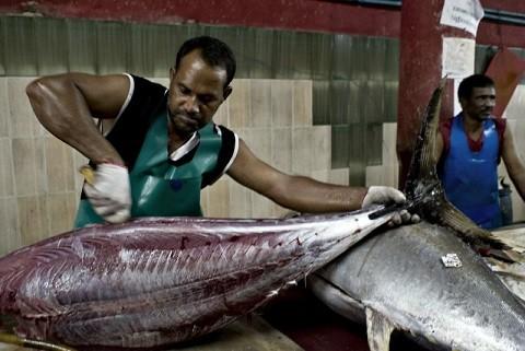 Мальдивские острова, отдых - рыбный рынок в Мале