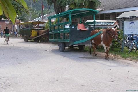 отдых на Сейшельских островах, остров Ла Диг - основной транспорт
