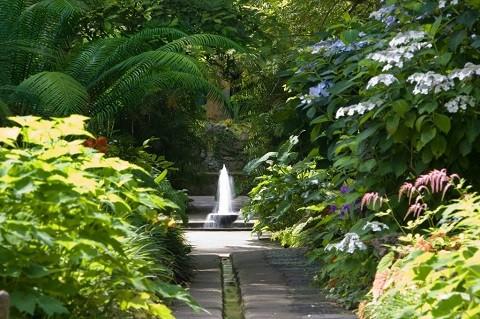 Отдых на острове Искья - удивительный Ботанический сад (Giardini La Mortella)
