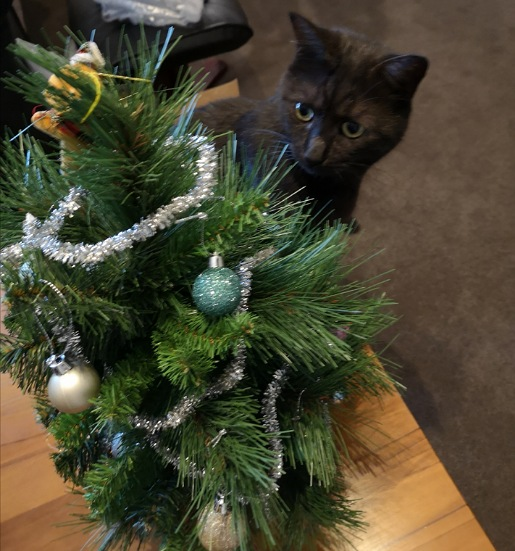 Cat attacks Christmas tree
