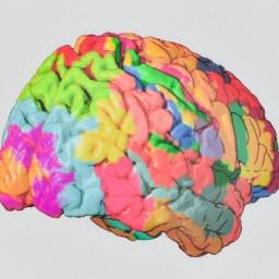 "Koribian Brodmann, ""Localization in the Cerebral Cortex"", 1909."