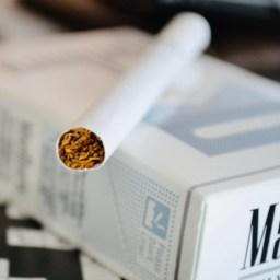 "Herbert A. Gilbert, ""Smokeless Non-Tobacco Cigarette"", #3,200,819 (United States Patent), 17 August 1965."