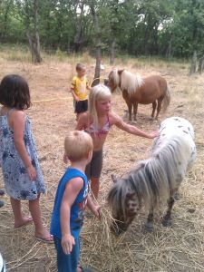 The ponies are always popular!