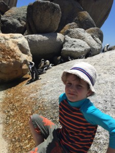 This is as close as Freddie would get! Boulders Beach