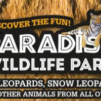 Paradise Wildlife Park - 'A unique attraction in Hertfordshire'