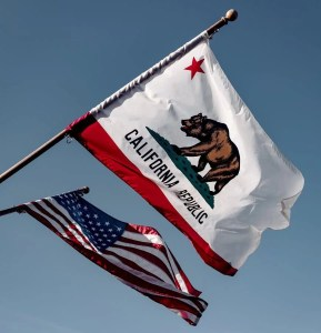 California flag - relief veterinarians california