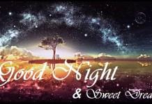Best Good Night Wish Image 11