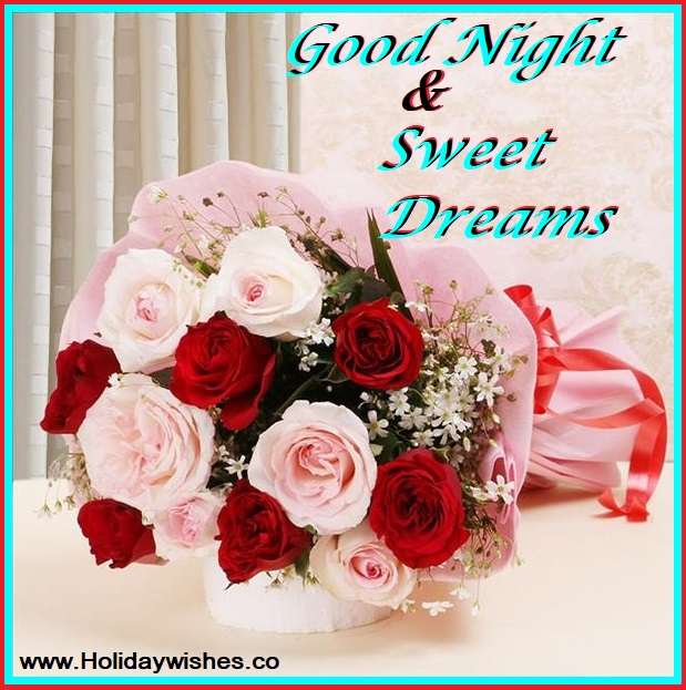 Awesome Good Night Pictures Images With Rose Flowers Holiday Wishes
