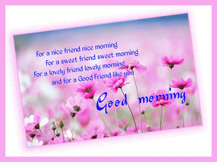 Best Good Morning Quotes With Images