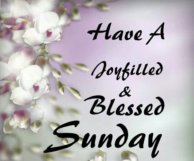 20 wonderful sunday blessings pictures images with good morning