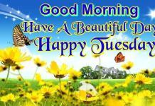 Happy Tuesday Wish Image 4