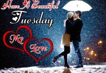 Best Happy Tuesday Morning Romantic Love Couple Pictures