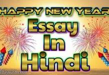 Happy new year essay in hindi image