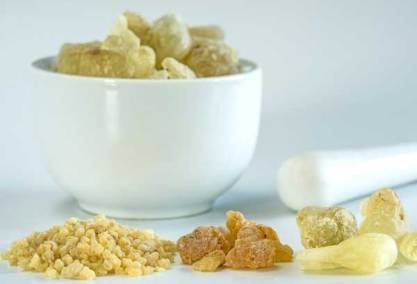 Boswellia - natural anti inflammatory for dogs