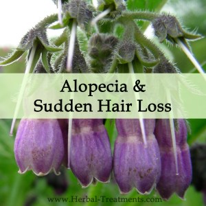 Herbal Medicine for Alopecia and Sudden Hair Loss