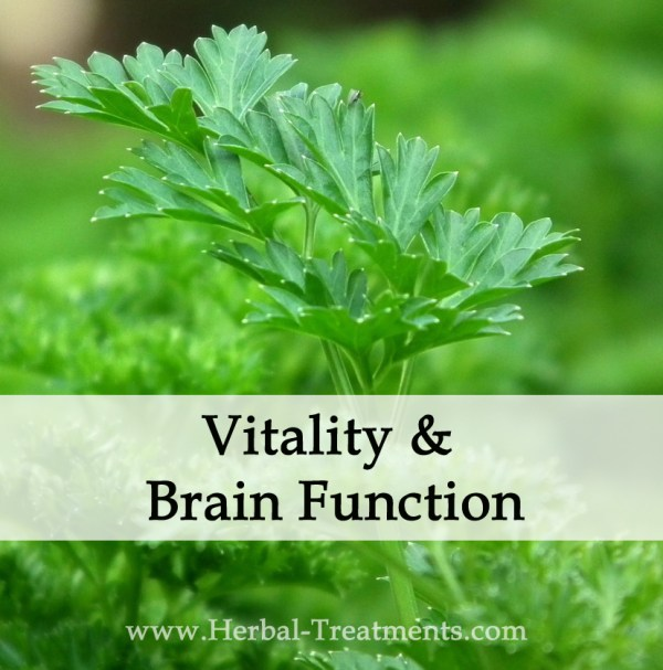 Herbal Medicine for Brain Vitality and Function