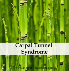 Herbal Medicine for Carpal Tunnel Syndrome