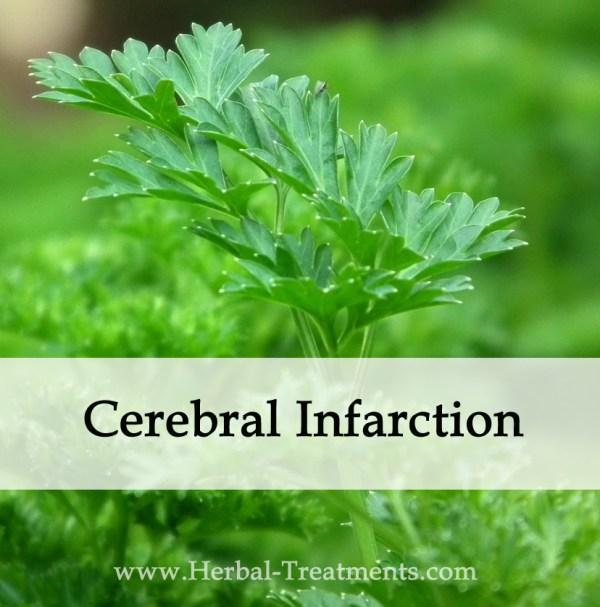 Herbal Medicine for Cerebral Infarction