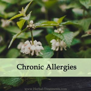 Herbal Medicine for Chronic Allergies
