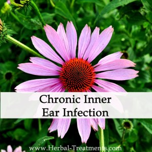 Herbal Medicine for Chronic Inner Ear Infections