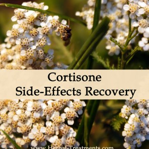 Herbal Medicine for Cortisone Side Effects Recovery