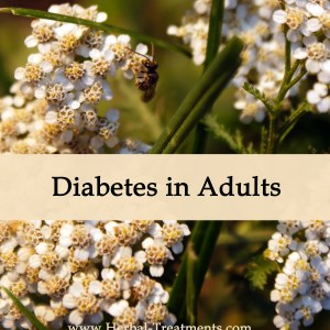 Herbal Medicine for Diabetes in Adults