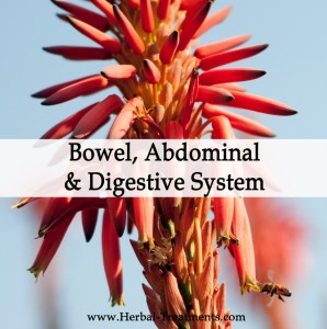 Herbal Treatments for Abdominal, Digestive and Bowel Conditions