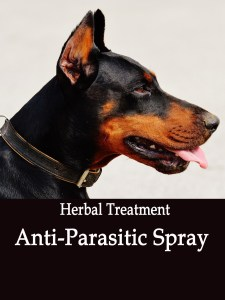 Anti-Parasitic Spray for Dogs