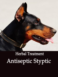 Natural Antiseptic Styptic for Dogs