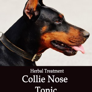 Collie Nose Herbal Tonic