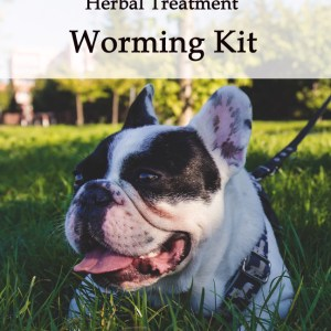 Herbal Worming Kit for Dogs