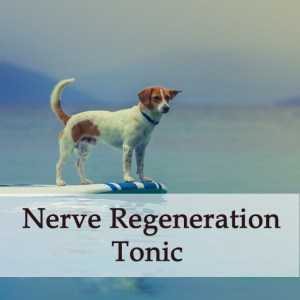 Herbal - Treatment - Nerve Regeneration Tonic for Dogs