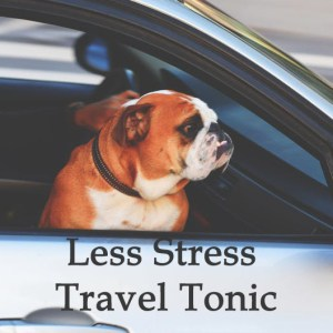 Herbal Treatment - Less Stress Travel Tonic for Dogs