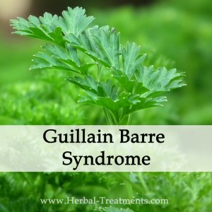 Herbal Medicine for Guillain Barre Syndrome