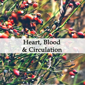 Herbal Treatments for Heart, Blood and Circulatory Conditions