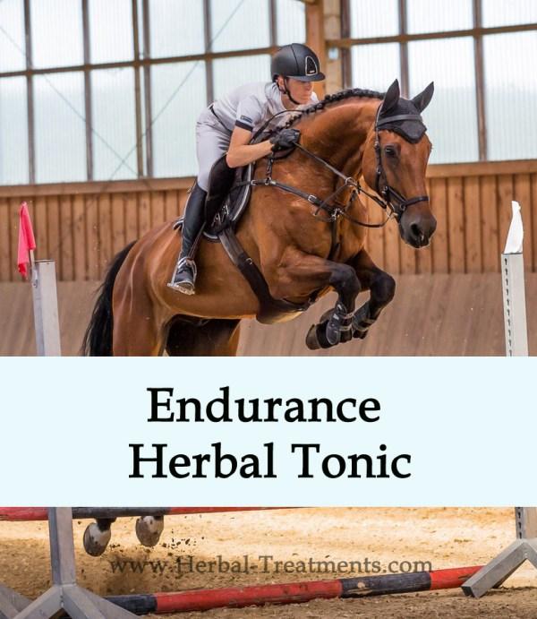 Endurance Herbal Tonic for Horses
