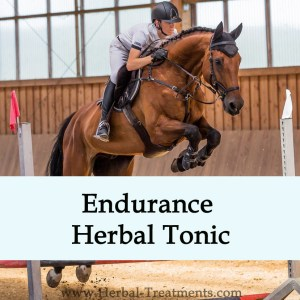 Endurance Herbal Tonic for Horses