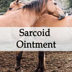 Herbal Treatment - Sarcoid Ointment for Horses