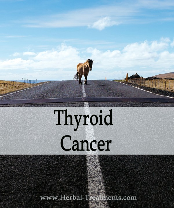 Herbal Treatment for Thyroid Cancer in Horses