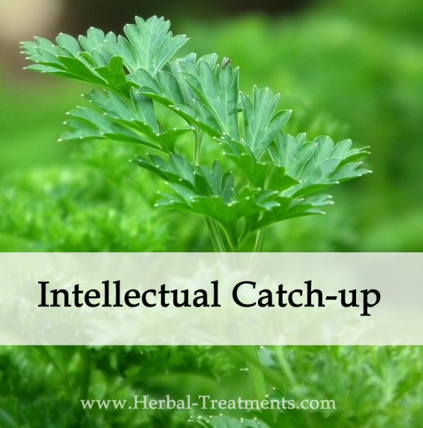 Herbal Medicine for Intellectual Catch-up