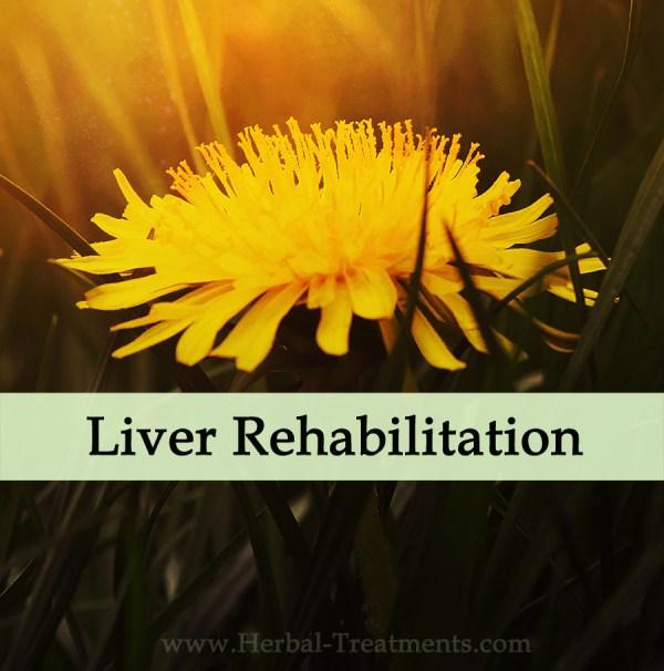 Herbal Medicine for Liver Conditioning (Sluggish Liver & Detox)