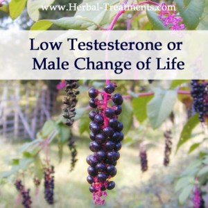 Herbal Medicine for Low Testesterone Levels, Male Menopause